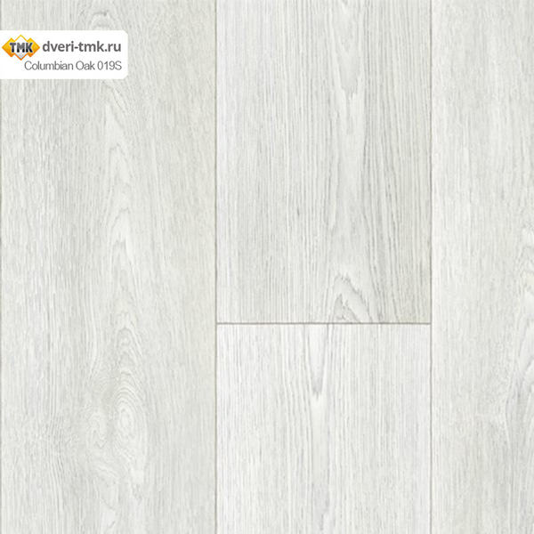 Columbian Oak 019S